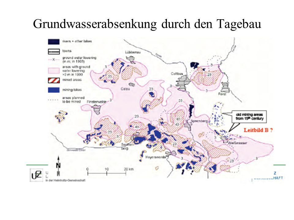 Grundwasserabsenkung durch den Tagebau