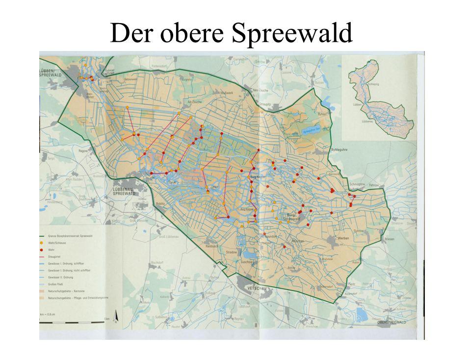 Der obere Spreewald