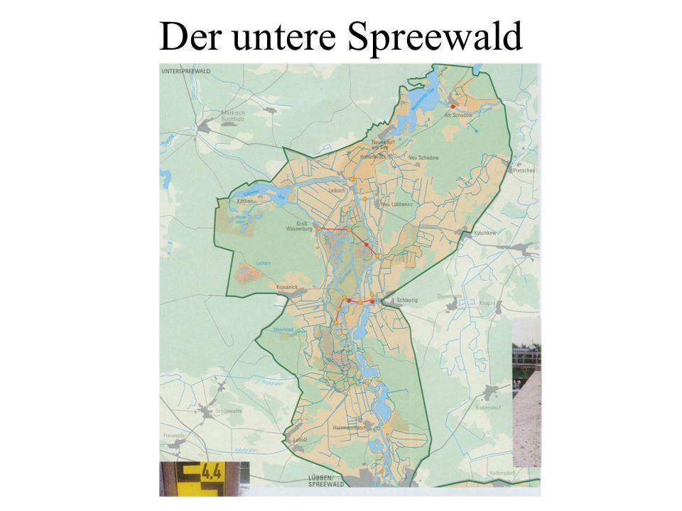 Der untere Spreewald