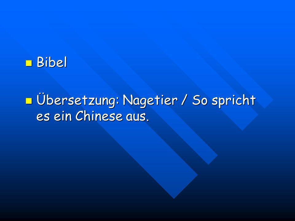 Bibel Übersetzung: Nagetier / So spricht es ein Chinese aus.