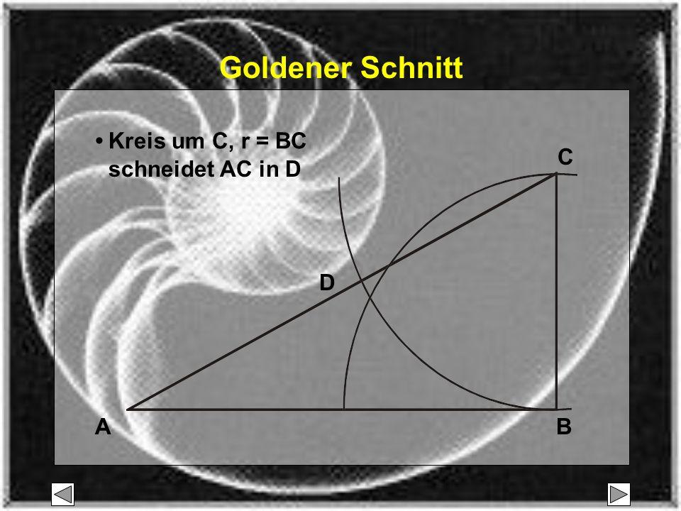 Goldener Schnitt • Kreis um C, r = BC C schneidet AC in D D A B