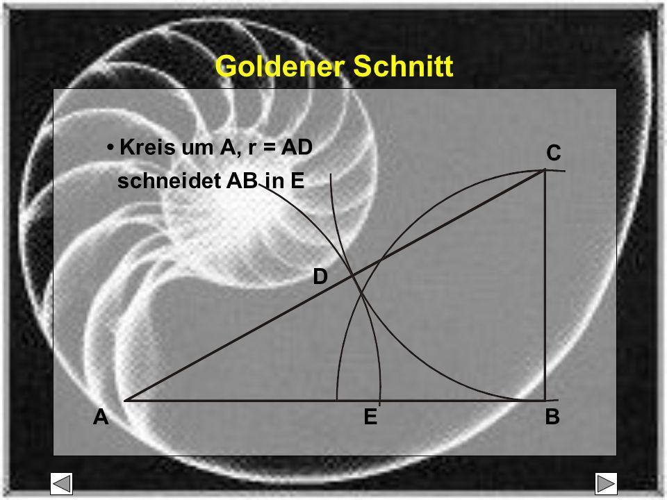 Goldener Schnitt • Kreis um A, r = AD C schneidet AB in E D A E B