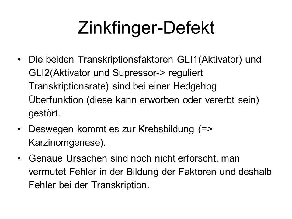 Zinkfinger-Defekt