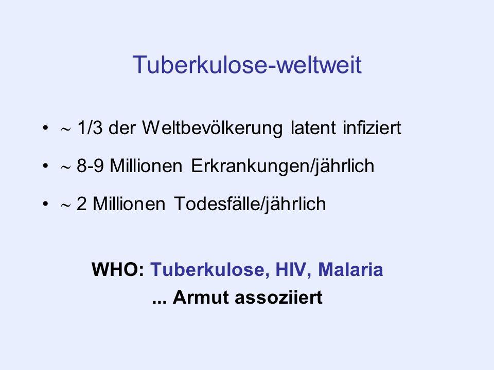 Tuberkulose-weltweit