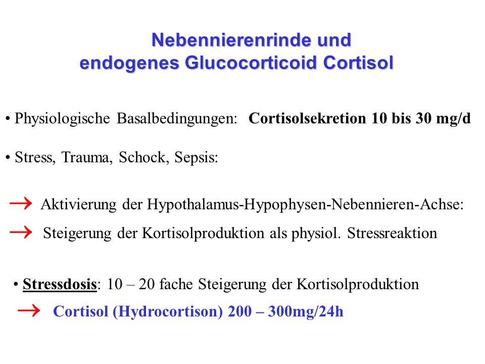 Nebennierenrinde und endogenes Glucocorticoid Cortisol