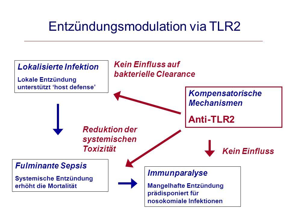 Entzündungsmodulation via TLR2
