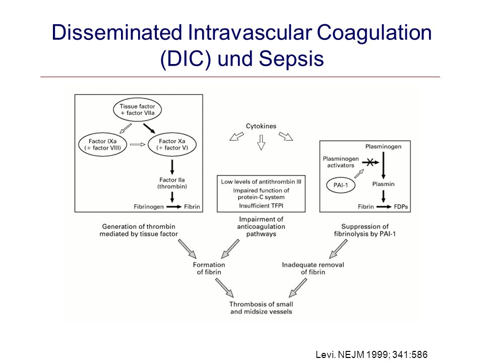 Disseminated Intravascular Coagulation (DIC) und Sepsis