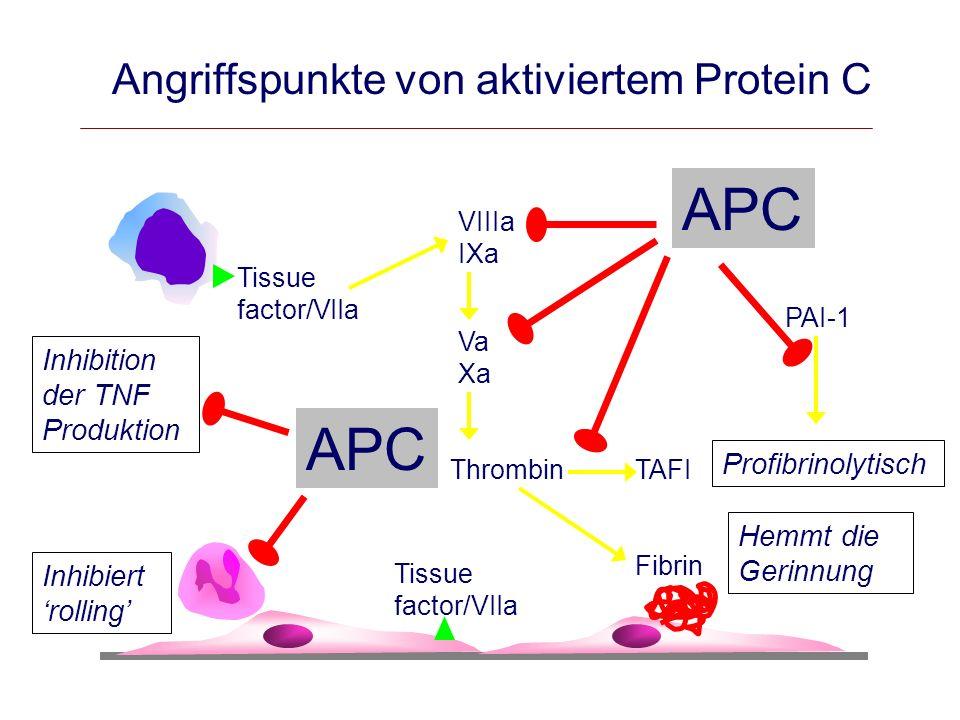 Angriffspunkte von aktiviertem Protein C