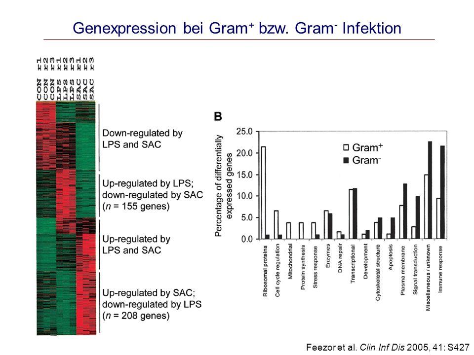 Genexpression bei Gram+ bzw. Gram- Infektion