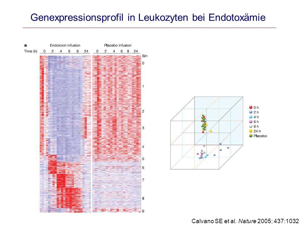 Genexpressionsprofil in Leukozyten bei Endotoxämie