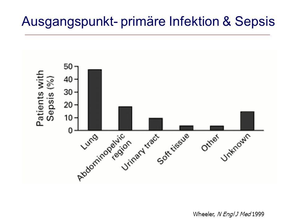 Ausgangspunkt- primäre Infektion & Sepsis