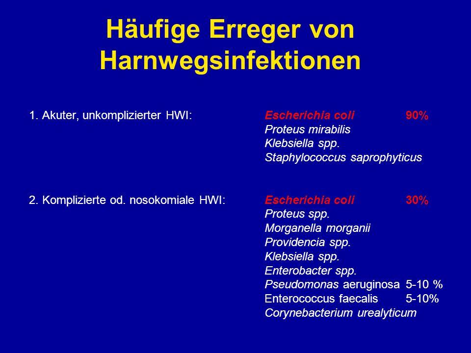 Häufige Erreger von Harnwegsinfektionen
