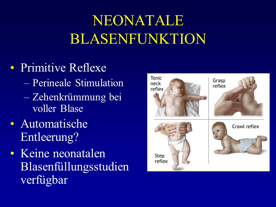 NEONATALE BLASENFUNKTION