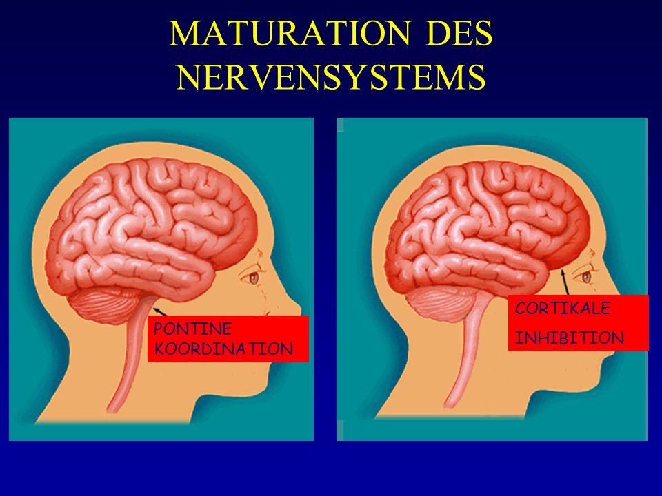MATURATION DES NERVENSYSTEMS