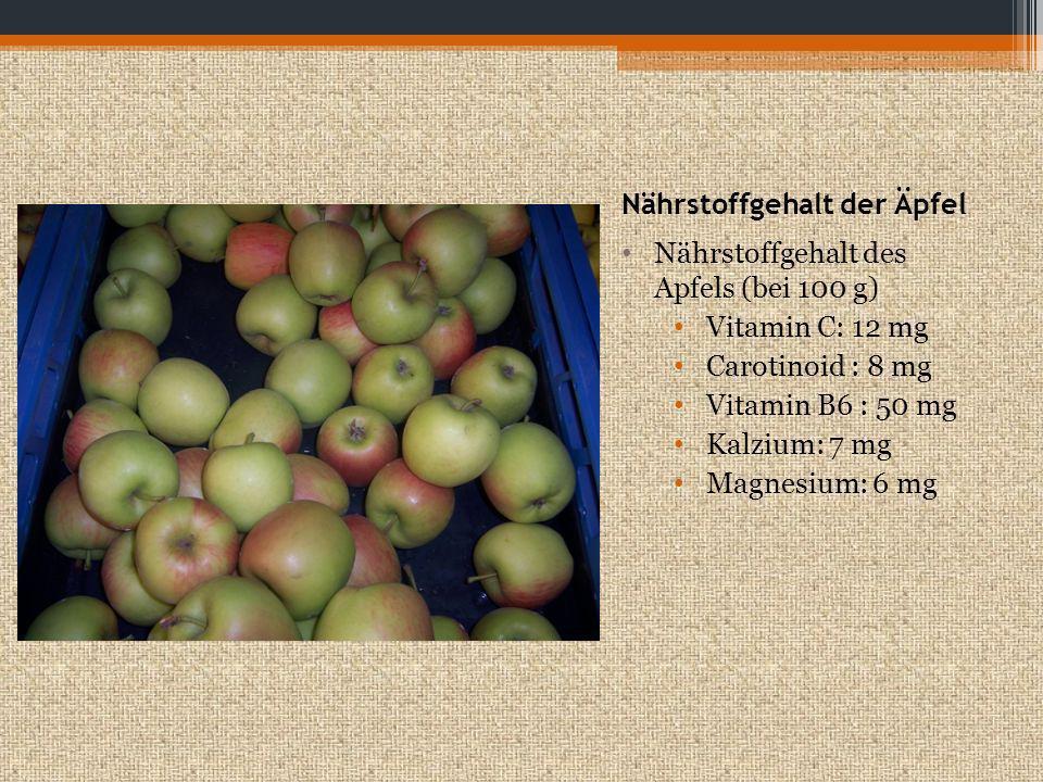 Nährstoffgehalt der Äpfel