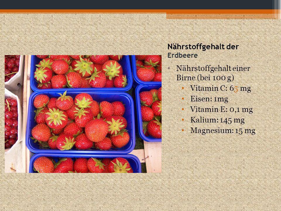 Nährstoffgehalt der Erdbeere