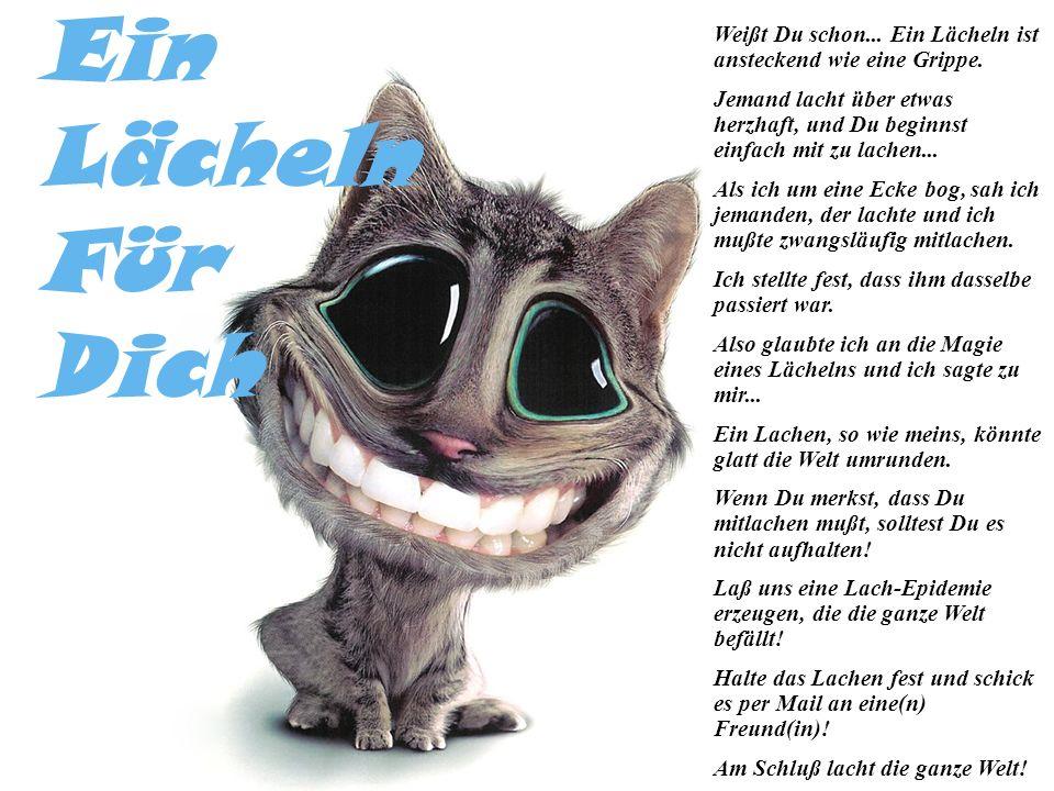 Ein Lächeln. Für. Dich. Weißt Du schon... Ein Lächeln ist ansteckend wie eine Grippe.