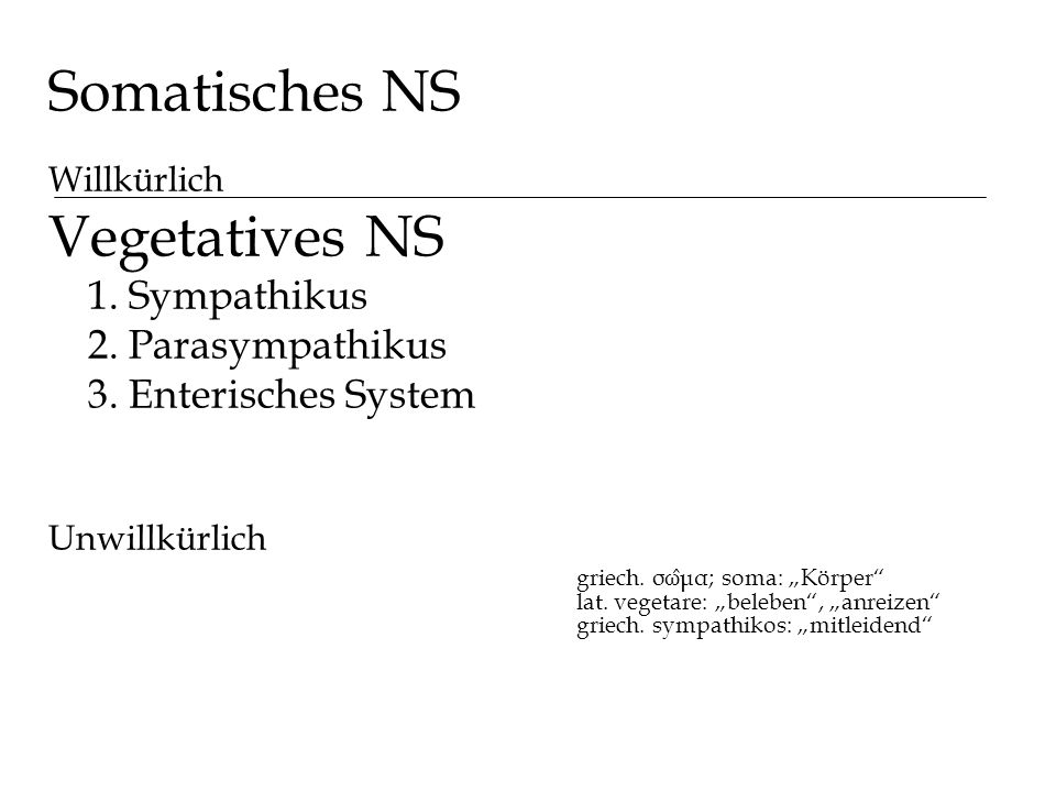 Somatisches NS Vegetatives NS 1. Sympathikus 2. Parasympathikus