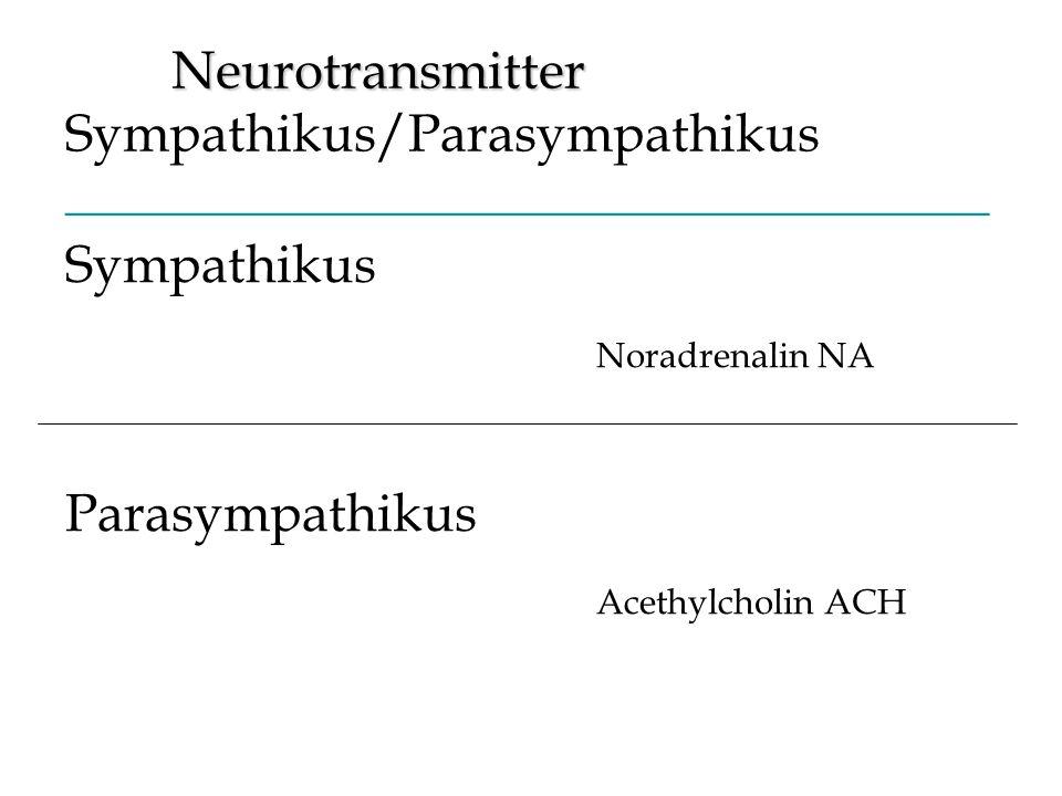 Noradrenalin NA Acethylcholin ACH