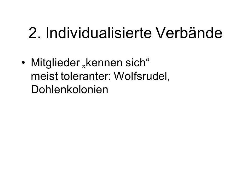 2. Individualisierte Verbände