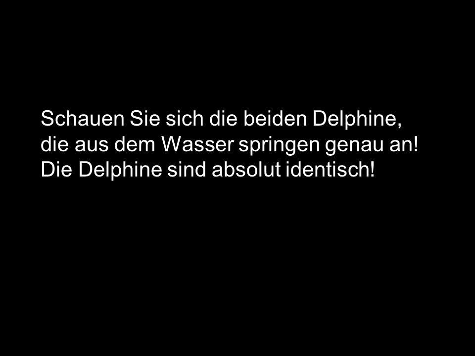 Schauen Sie sich die beiden Delphine, die aus dem Wasser springen genau an.