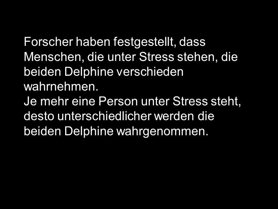 Forscher haben festgestellt, dass Menschen, die unter Stress stehen, die beiden Delphine verschieden wahrnehmen.
