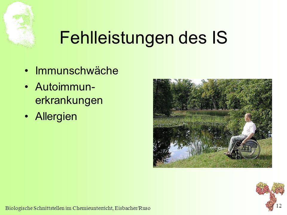Fehlleistungen des IS Immunschwäche Autoimmun-erkrankungen Allergien