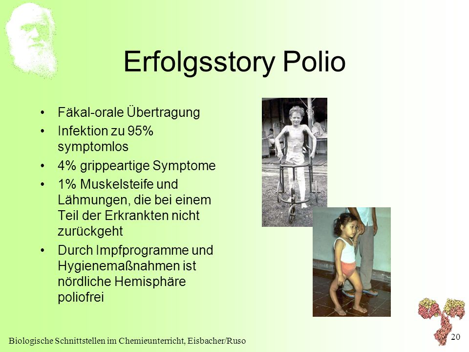 Erfolgsstory Polio Fäkal-orale Übertragung Infektion zu 95% symptomlos