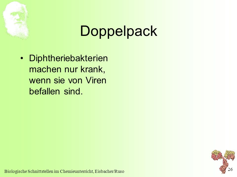 Doppelpack Diphtheriebakterien machen nur krank, wenn sie von Viren befallen sind.