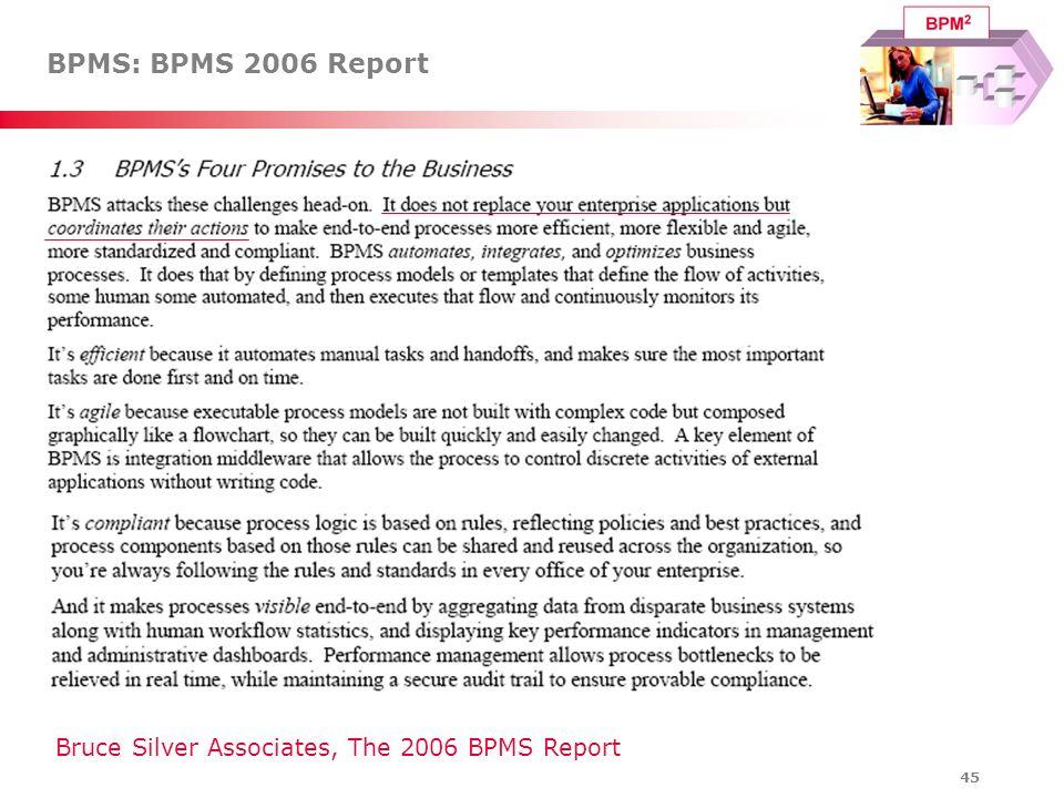 BPMS: BPMS 2006 Report Bruce Silver Associates, The 2006 BPMS Report