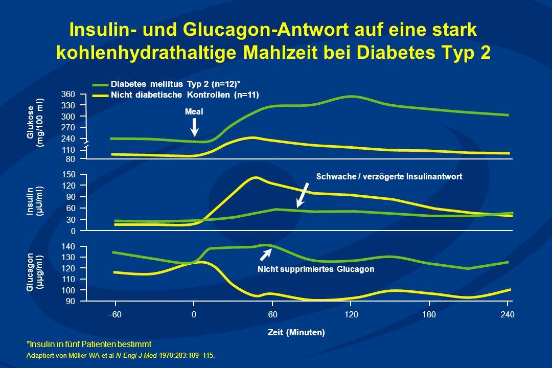 Schwache / verzögerte Insulinantwort Nicht supprimiertes Glucagon