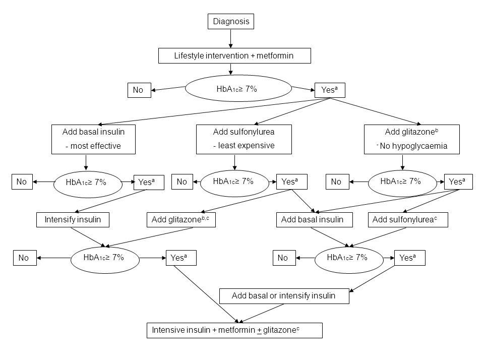 Lifestyle intervention + metformin