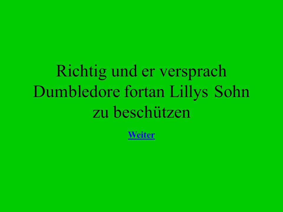 Richtig und er versprach Dumbledore fortan Lillys Sohn zu beschützen