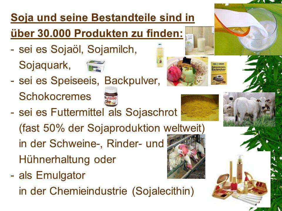 Soja und seine Bestandteile sind in über 30.000 Produkten zu finden: