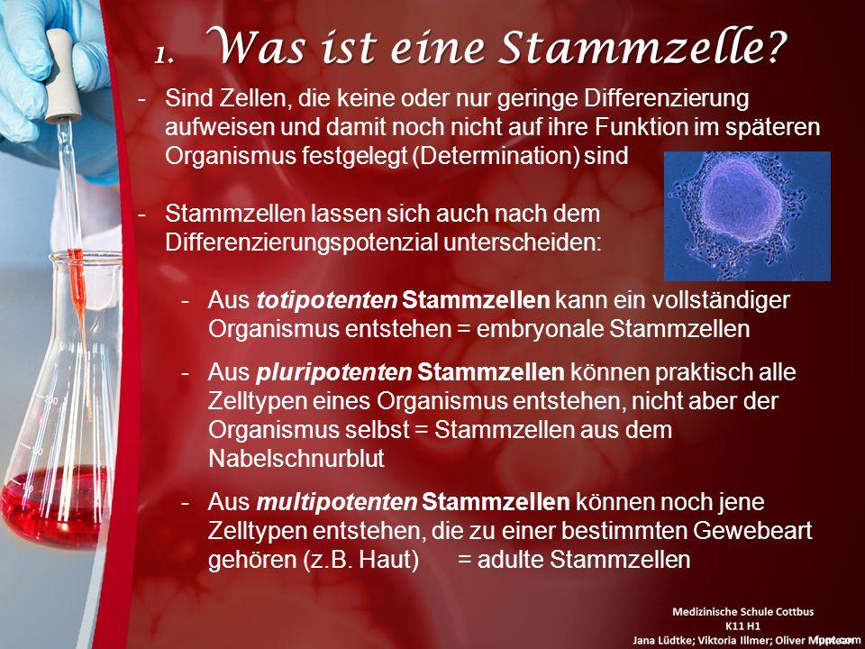 1. Was ist eine Stammzelle