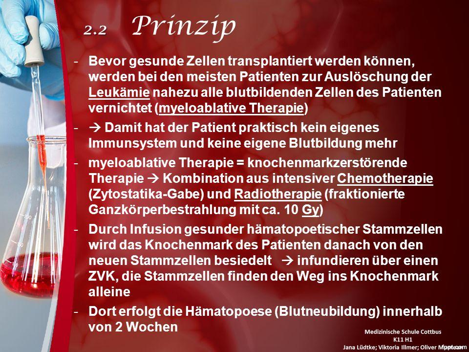 2.2 Prinzip