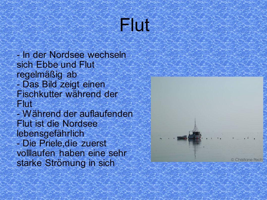 Flut - In der Nordsee wechseln sich Ebbe und Flut regelmäßig ab
