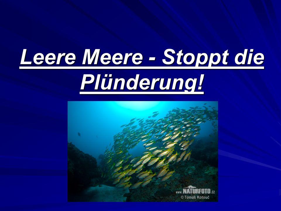 Leere Meere - Stoppt die Plünderung!