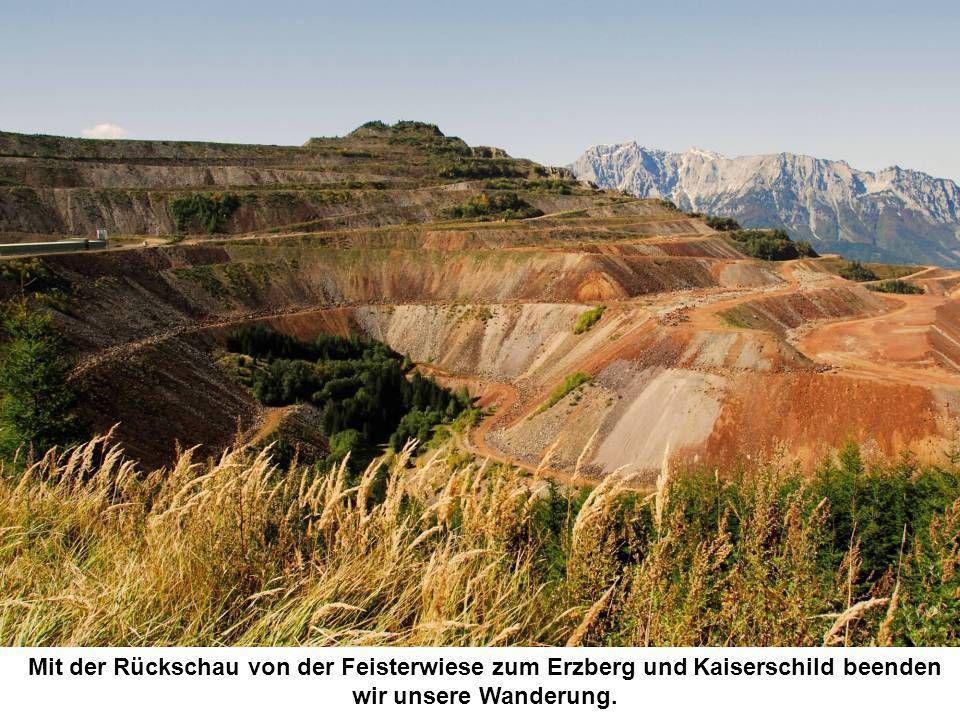 Mit der Rückschau von der Feisterwiese zum Erzberg und Kaiserschild beenden wir unsere Wanderung.