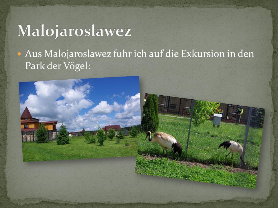Malojaroslawez Aus Malojaroslawez fuhr ich auf die Exkursion in den Park der Vögel: