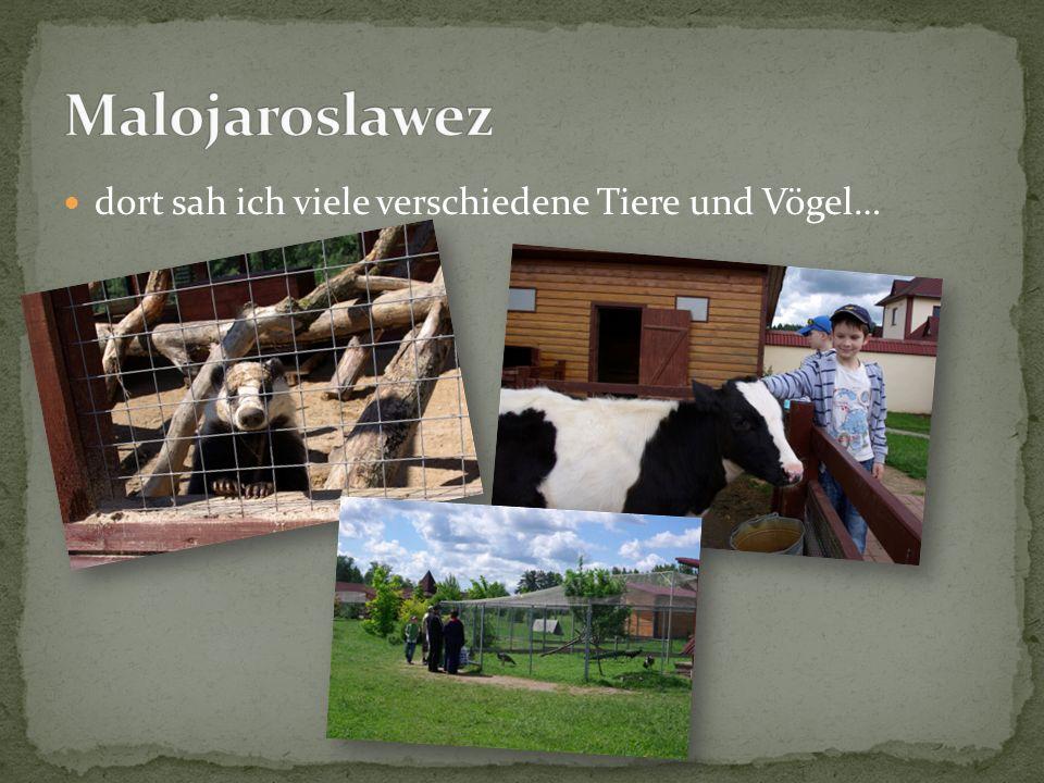 Malojaroslawez dort sah ich viele verschiedene Tiere und Vögel…