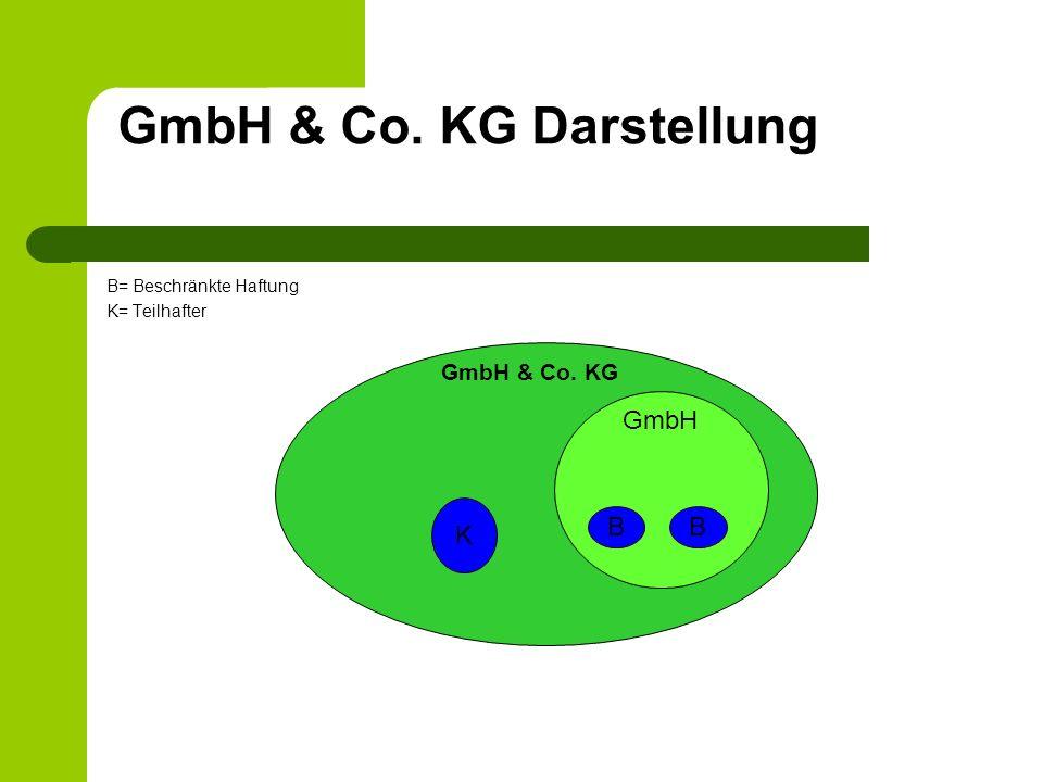 GmbH & Co. KG Darstellung