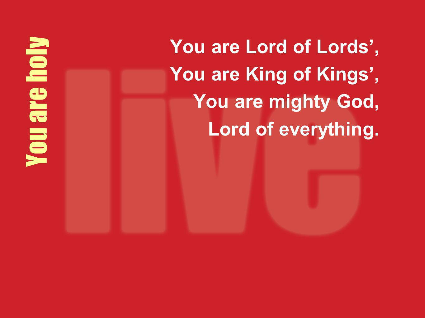 You are holy You are Lord of Lords', You are King of Kings',