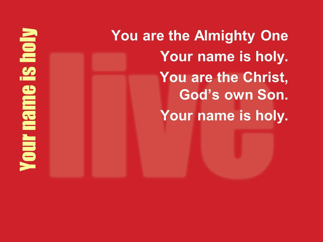 Your name is holy You are the Almighty One Your name is holy.