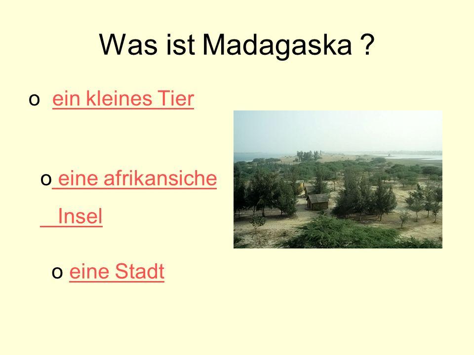 Was ist Madagaska ein kleines Tier eine afrikansiche Insel