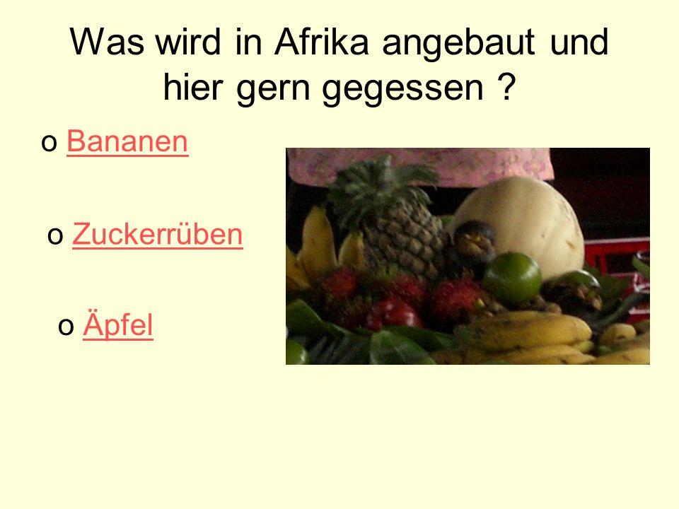 Was wird in Afrika angebaut und hier gern gegessen