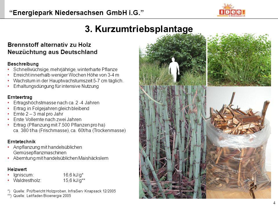 4. Holzvergaser
