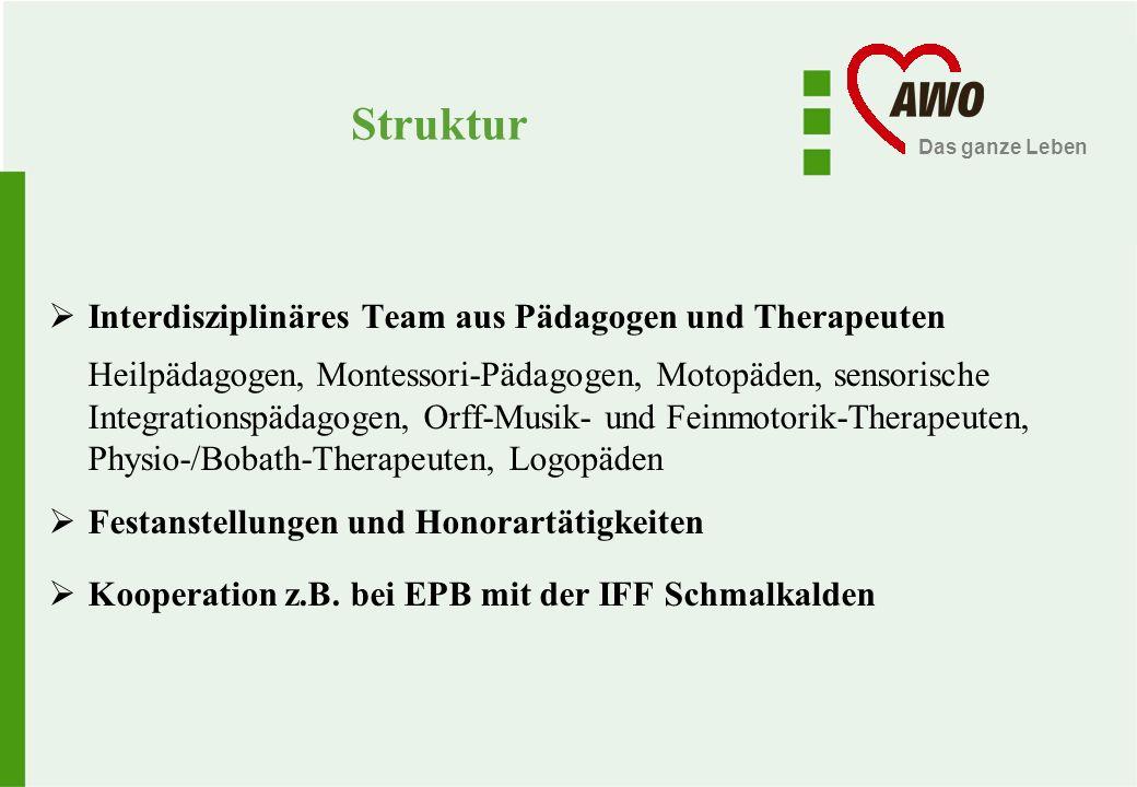 Struktur Interdisziplinäres Team aus Pädagogen und Therapeuten