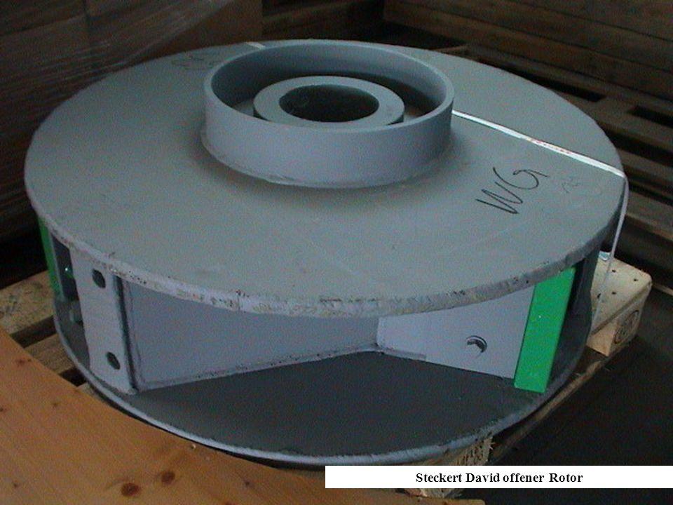 Steckert David offener Rotor