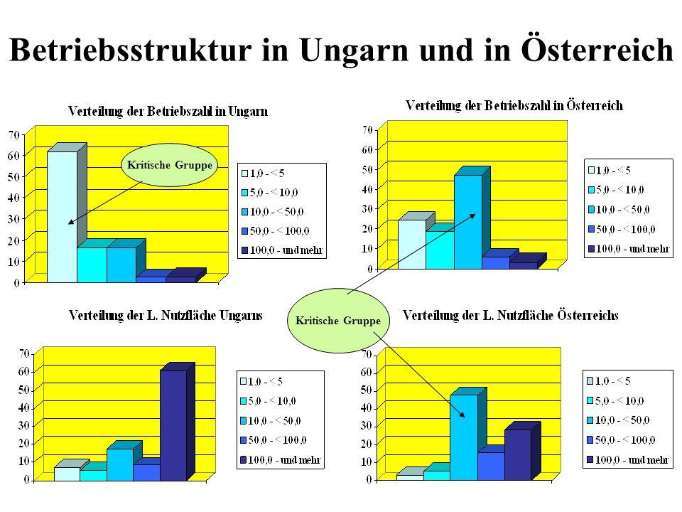 Betriebsstruktur in Ungarn und in Österreich